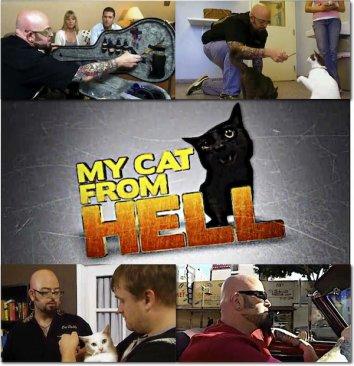 Смотреть Адская кошка онлайн в HD качестве 720p