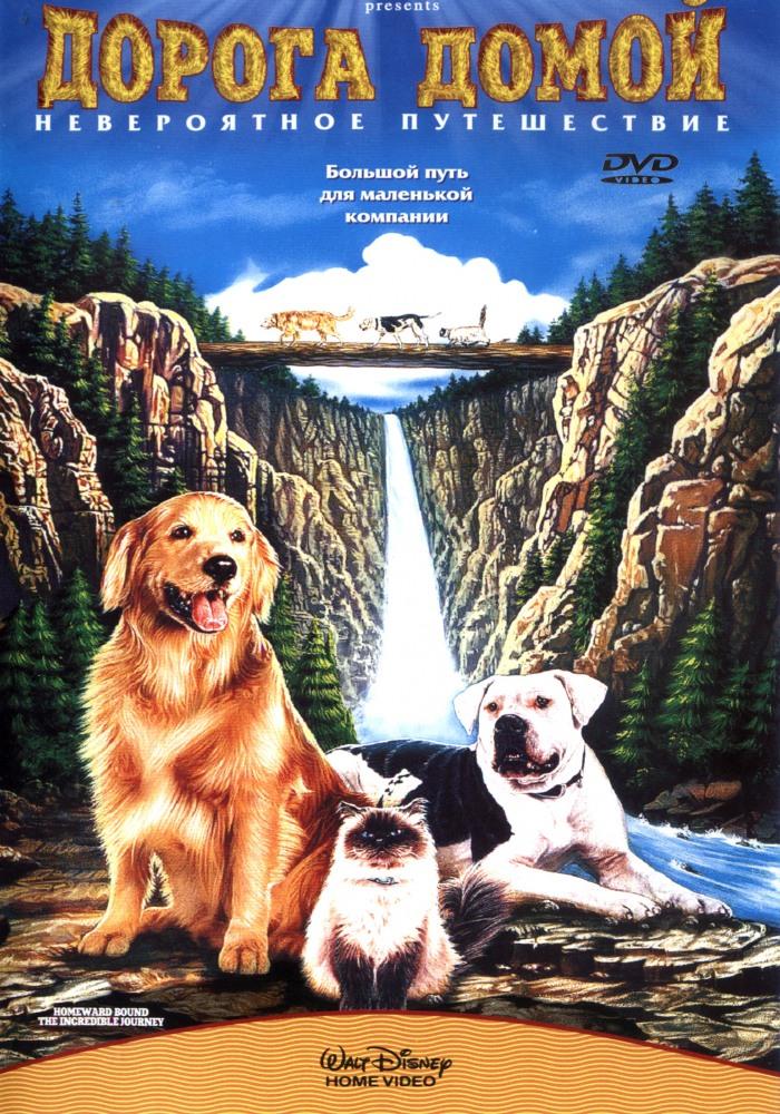 смотреть фильм онлайн бесплатно в хорошем качестве про собак: