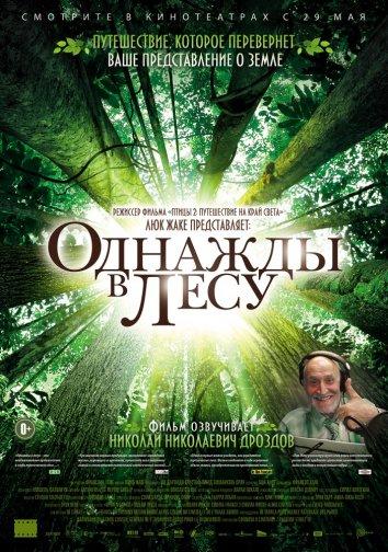 Смотреть Однажды в лесу онлайн в HD качестве 720p
