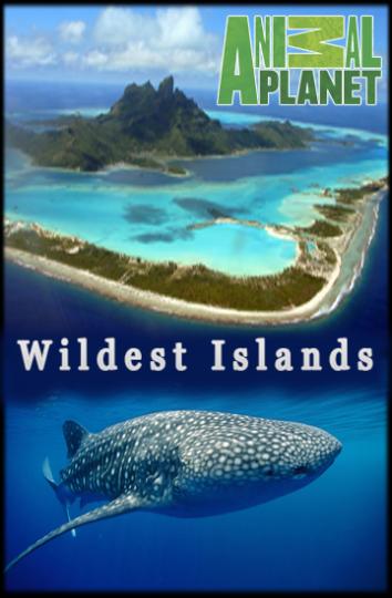 Смотреть Неизведанные острова онлайн в HD качестве 720p