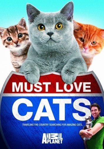 Смотреть Кошек не любить нельзя онлайн в HD качестве 720p