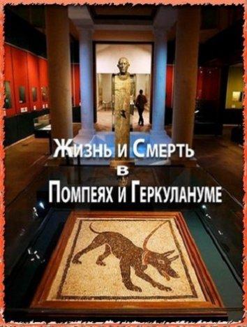 Смотреть Жизнь и смерть в Помпеях и Геркулануме онлайн в HD качестве 720p
