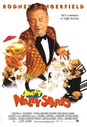Смотреть Познакомьтесь с Уолли Спарксом онлайн в HD качестве 720p